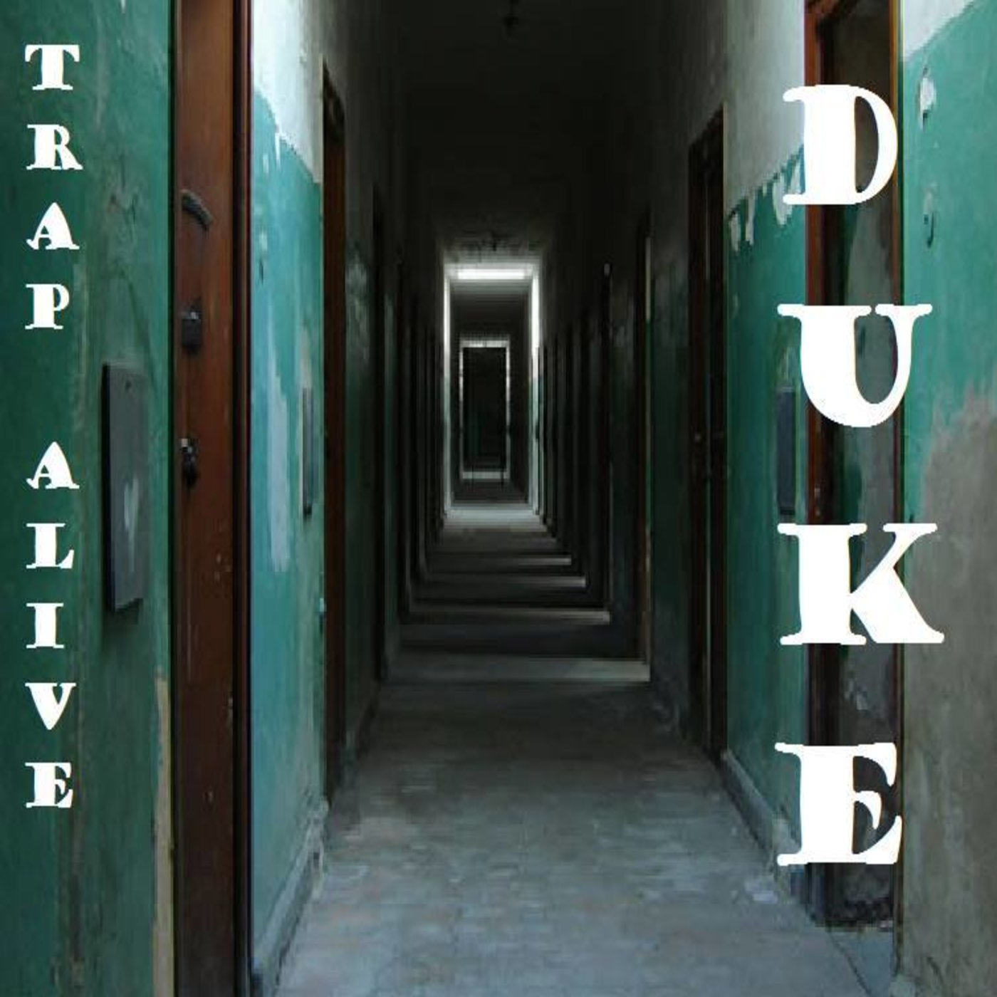 Duke  An independent artist from Washington DC
